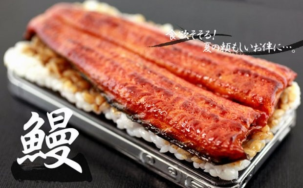 Unagi don iPhone case