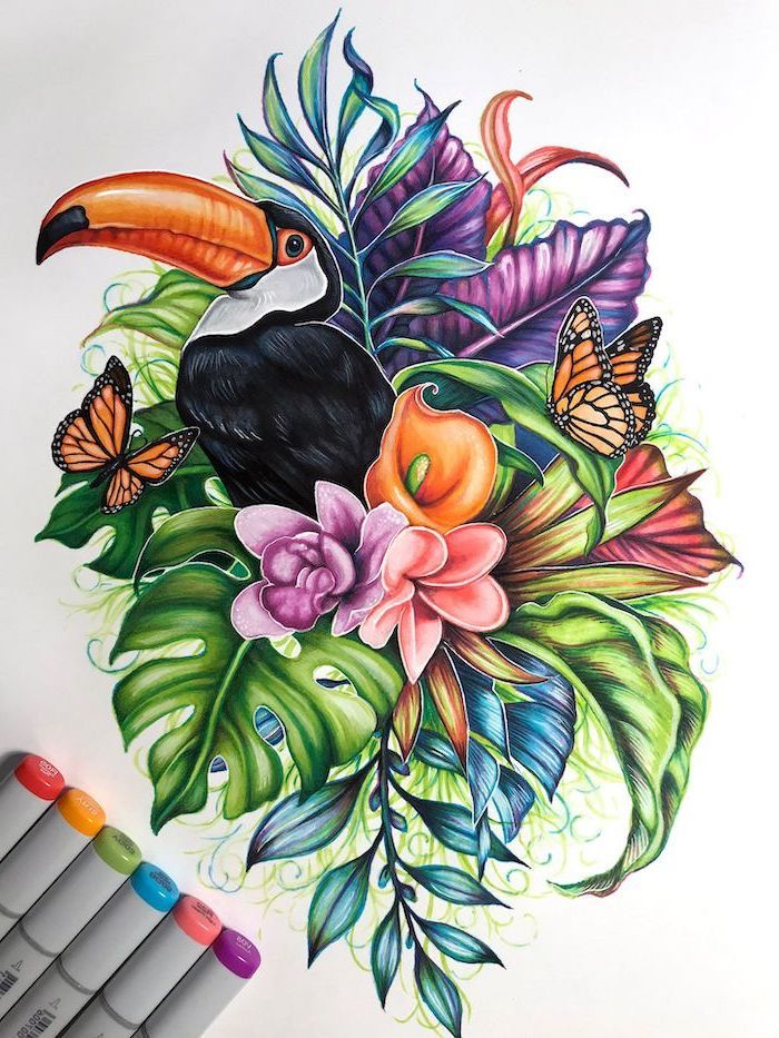 Easy Flowers To Draw Toucan Bird Flowers Butterflies Around It Colored Drawing White Background Flower Drawing Painting Art Projects Cute Flower Drawing