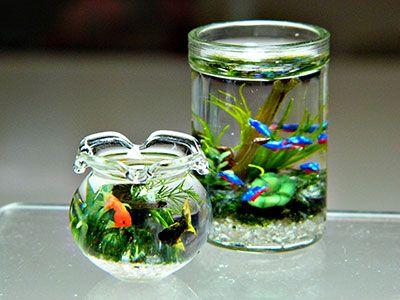 miyuki kobayashi miniatures - Google Search