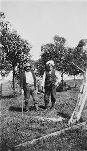 1900's farm life in australia