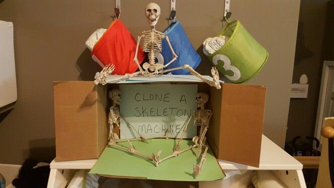 Bought a few cheap you dollar store skeletons so my Skeleton in the Closet could clone himself.