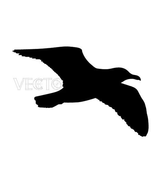 seagull silhouette clip art - 530×600
