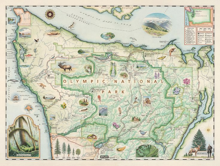 10 best maps images on pinterest hand drawn national parks map olympic national park map sciox Image collections
