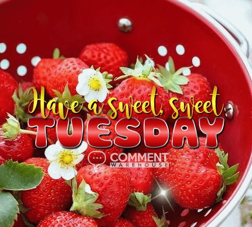 Have a sweet sweet Tuesday | Tuesday Graphics Days of the Week Graphics Tuesday Images Quotes Pics Greetings Hello Great Day | more at commentwarehouse.com