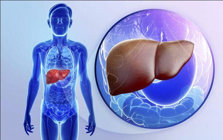 3 alimente care REGENEREAZA FICATUL! Include-le imediat in alimentatia ta! - dr. Andrei Laslău