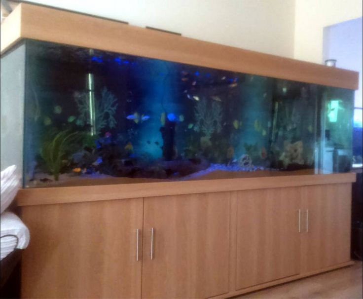 """Tropical aquarium 96""""x24""""x24"""" Classic cabinet design from Prime Aquariums - Your custom Fish Tank Manufacturer in London. Any size glass tanks with 3 year guarantee."""