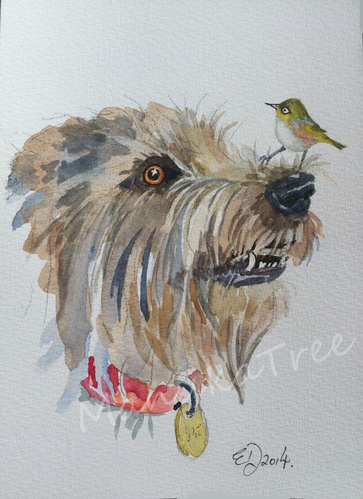 Wolfhound with NZ native Tauhou (waxeye) - FOR SALE: http://felt.co.nz/listing/227169/Original-watercolour---Elizabeth-Dodd