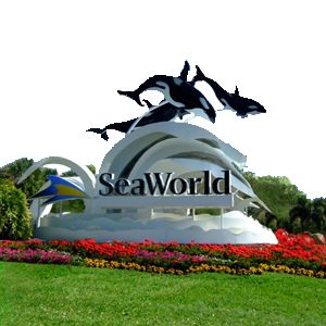 Got to go to Sea World/ Epcot/ Universal Studios/etc twice in high school... so amazing!!!!! Can't wait to go with Tony and the kids one day.