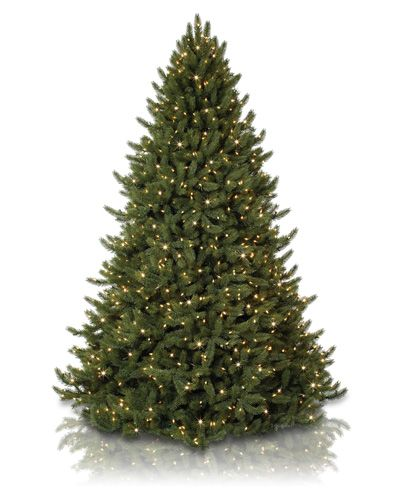 The Vermont White Spruce is not only the jewel in our Vermont Signature Collection, we think it is one of the most amazing and lifelike artificial Christmas trees you will ever see.