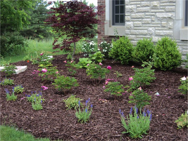 The best wood chips landscaping ideas on pinterest