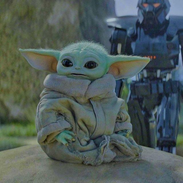 Baby Yoda Grogu Memes Na Instagramu Hi Uh Where S Din Therealbabygrogu Follow Therealbabygrogu Follow Therealb Yoda Wallpaper Cute Baby Dogs Star Wars Art