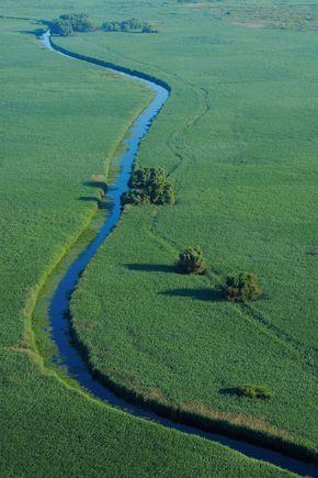 Danube Delta, Romania, Rewilding Europe, www.romaniasfriends.com