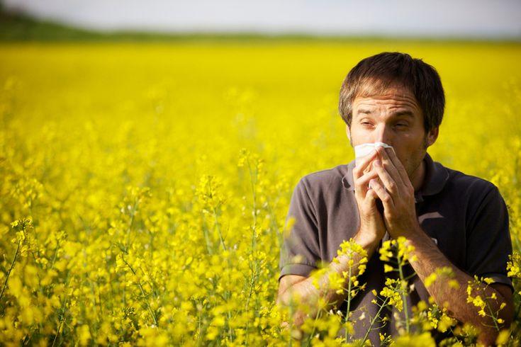 Φυσικά διορθωτικά μέτρα για τις αλλεργίες