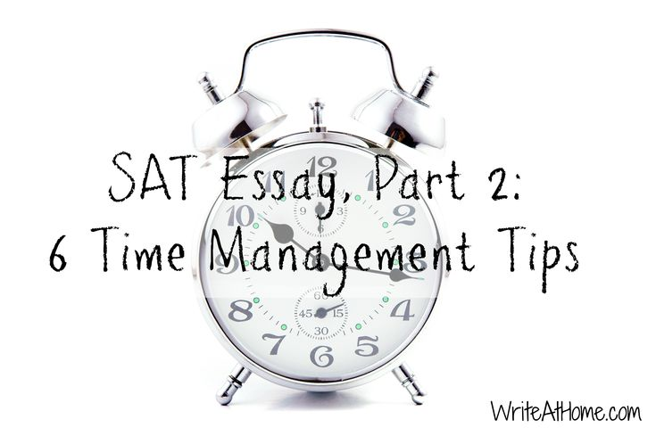 Sat essay writing help legitimate