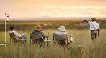 Wildlife & safari travel offers