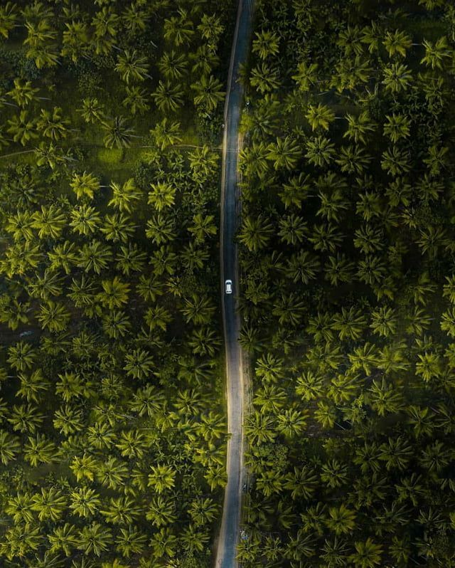 Areal shot of a road in Kochi, Kerala. India More …