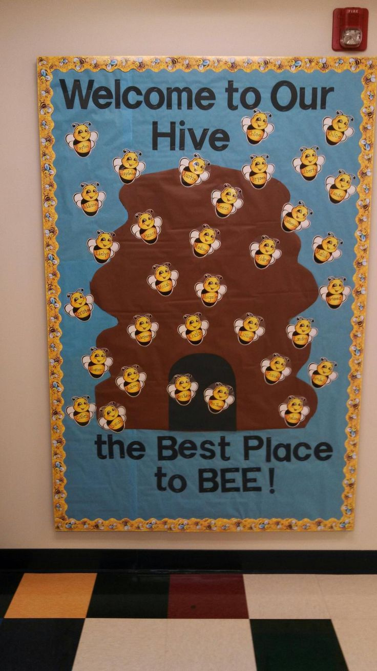 Busy Bee Room. Preschool. PreK. Bulletin Board. Hive