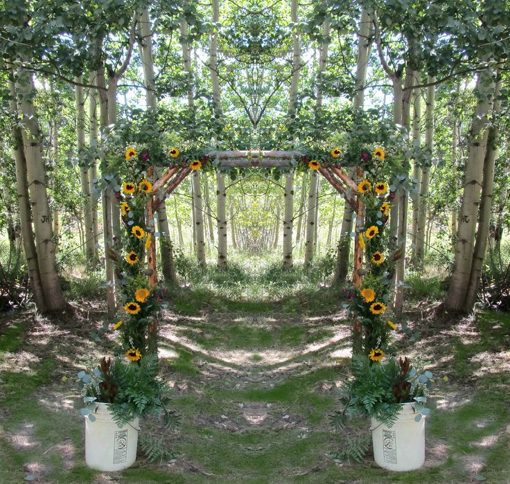 A Sunflower Arbor For A Wedding In The Woods! In 2019