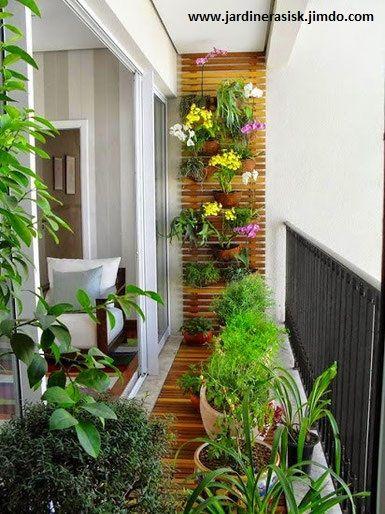 """Celosia de madera de Pino para su """" Jardin Vertical """""""