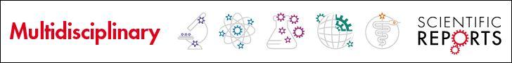 Electronics: The carbon-nanotube computer has arrived : Nature : Nature Publishing Group