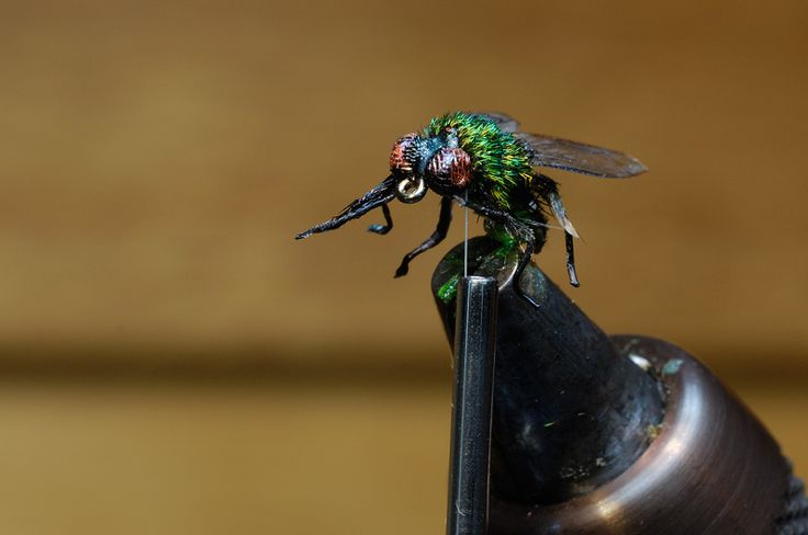 Realistic House Fly being tied on a vise.  -- I wonder if you can tie a realistic dog poop for it to land on.