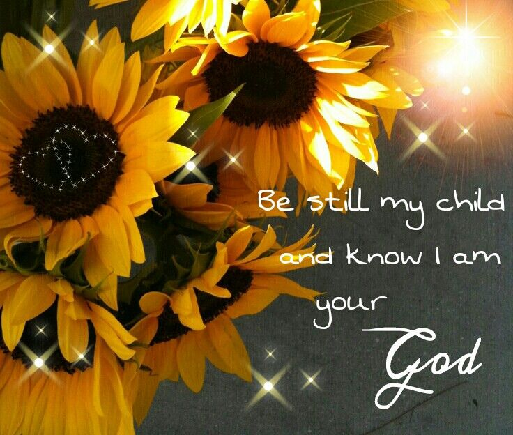 PSALMS 46:10 Be still and know I am God. | SUNFLOWERS ...
