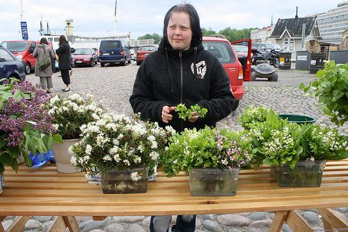 Market in the middle of Helsinki (2010)