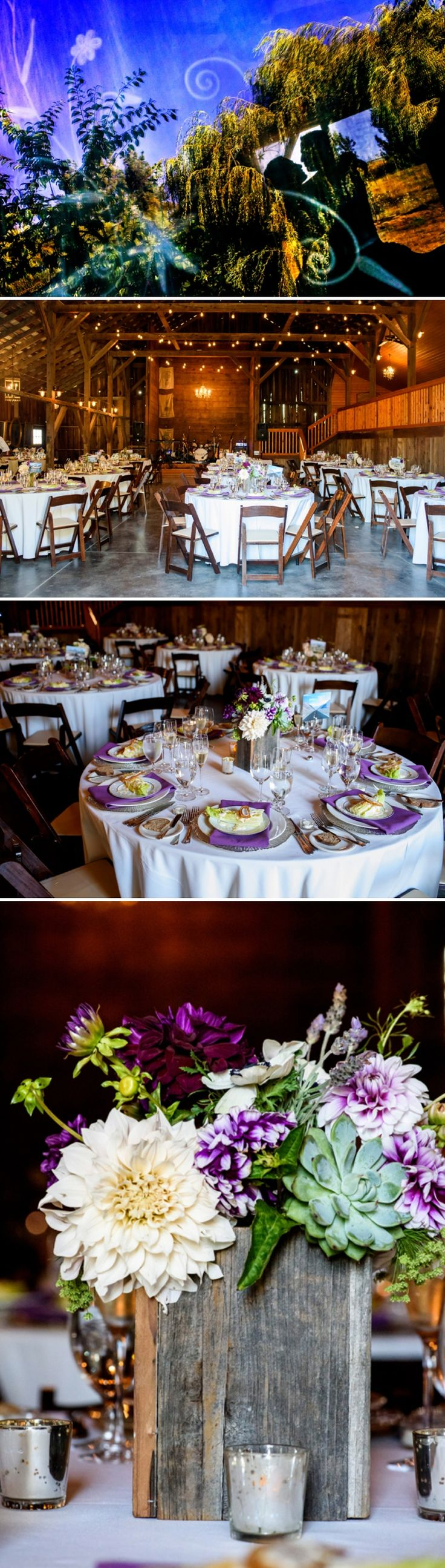 Wedding in a barn / Bouquets of lavender, purple and white dahlias, café au lait dahlias, succulents and anemones / Michael Daigian Design / Vera Wang Bride / a Jewish travel-themed barn wedding / at Olympia's Valley Estate, Petaluma, California, USA / Photography by Chrisman Studios / http://www.smashingtheglass.com/2016/08/02/vera-wang-bride-jewish-travel-themed-barn-wedding-olympias-valley-estate-petaluma-california-usa/