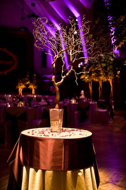 1. manzanita branch - on escort card/guest photo book table 2. spot lighting on head and cake tables