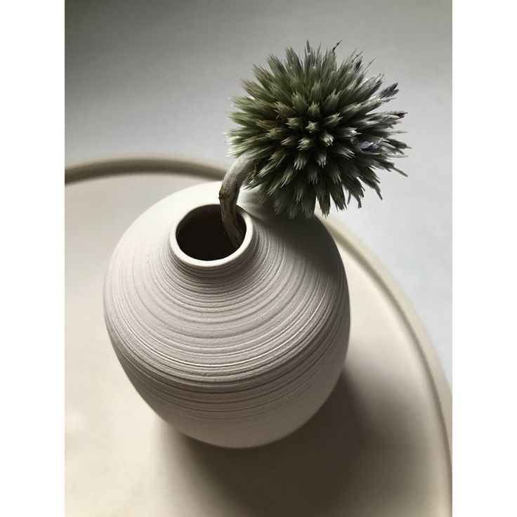 Fiona Mackay Ceramics White bud vase and plate
