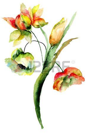 Aquarel illustratie van wilde bloemen