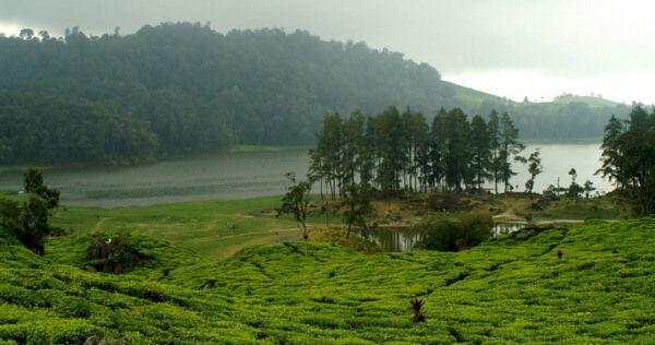 Terletak di Bandung Selatan, Situ Patenggang berada tepat di kawasan Ciwidey dan ada di ketinggian 1600 m dpl. Tempat ini sangat disukai banyak orang oleh karena eksotismenya