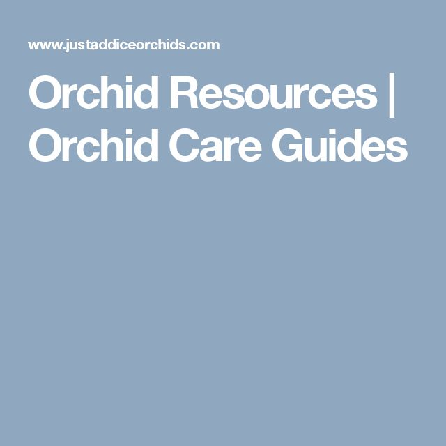Orchid Resources | Orchid Care Guides