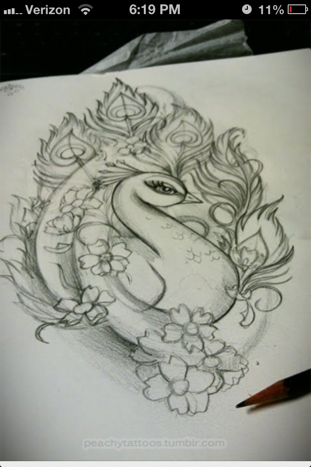 Peacock tattoo idea, not sure if this would actually make it somewhere on my bod