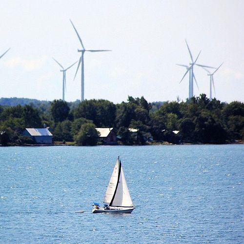 Summer Breeze | Wolf Island, Ontario  #sailing #island #landscapephotography