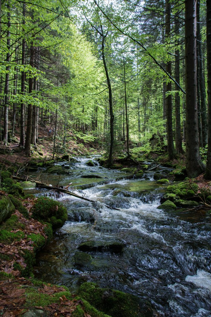 Landscape Photography Tips: willkommen-in-germany