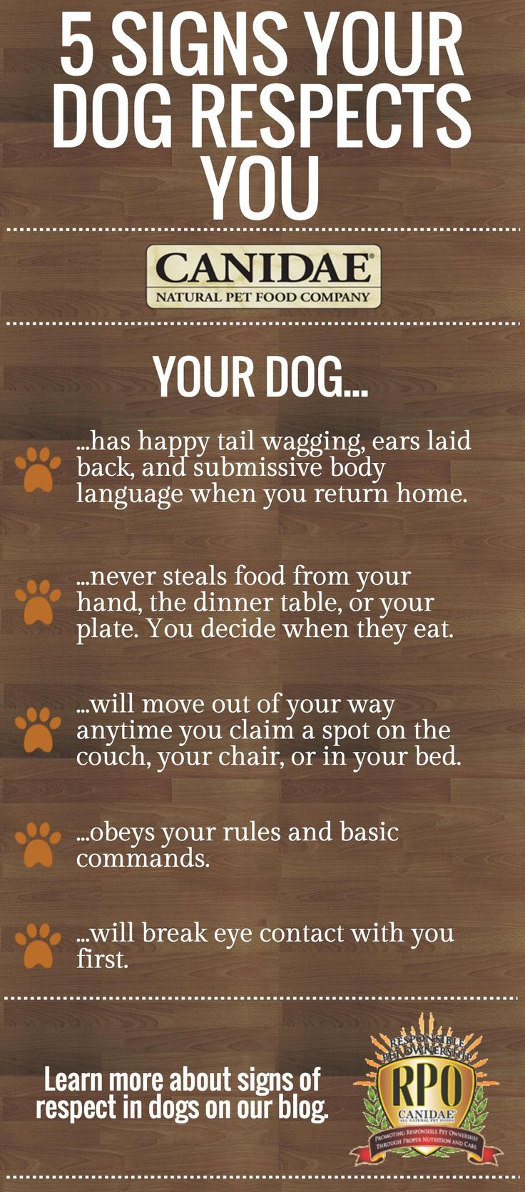 Signs That Show Your Dog Respects You | Canidae Blog