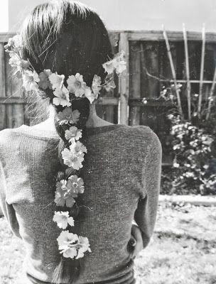 tumblr papatya | kuslardan serçe, çiçeklerden papatya, renklerden beyazdınız