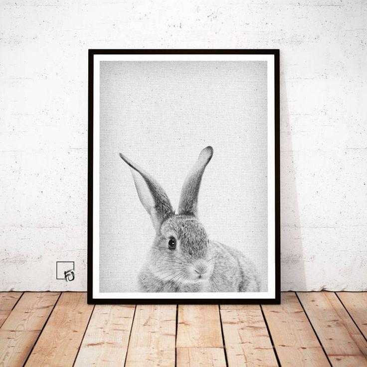 Rabbit Print, Peekaboo Rabbit, Rabbit Wall Art, Rabbit Baby Animal, Poster Bunny, Rabbit Download, Rabbit Nursery Decor, Rabbit scandinavian by FroileinJuno on Etsy