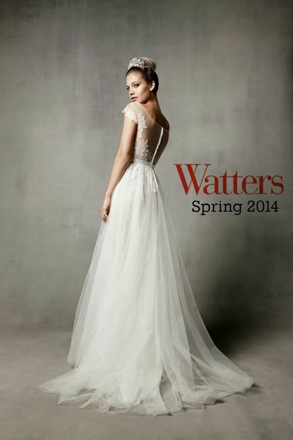 watters bridal | Wedding Dresses: Watters Bride Spring 2014 Collection