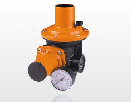 Gas Pressure Regulators | Pietro Fiorentini HP100 Regulator