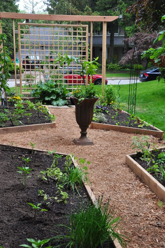 Best 25 yard privacy ideas on pinterest screening for Garden redesign on a budget