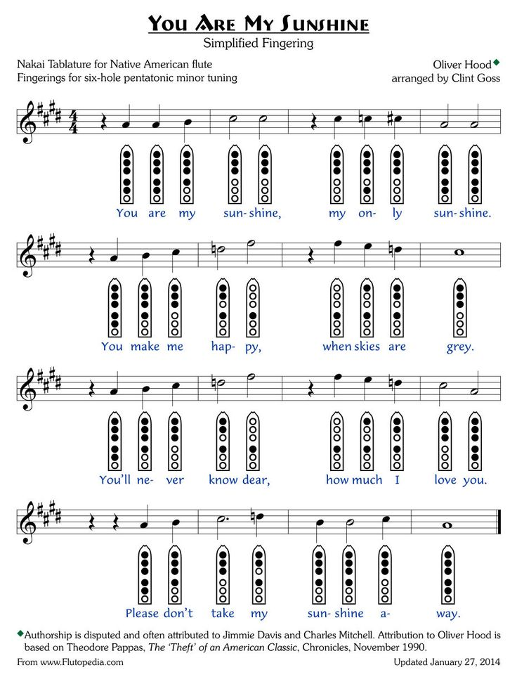 You Are My Sunshine - Simplified Fingerings - Six-hole ...