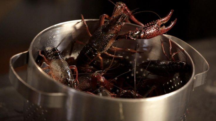 De saus rouille komt uit het programma Koken met van Boven. Lees hier het hele recept en maak zelf heerlijke rouille.
