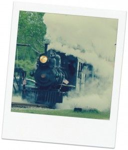 Maine Narrow Gauge Railroad Co. & Museum The museum is open May 10th-October 19th (Saturday through Thursday) from 10am-4pm. Trains run on the hour at 10am, 11am, Noon, 1pm, 2pm and 3pm.  The train ride lasts approximately 40 minutes.   Train Tickets: Adults-$10  |  Seniors-$9  |  Children (Age 3-12)-$6  |  Children (2 & Under)-Free.  Train ticket includes museum admission & tickets are good all day.  Train ride is approximately 40 minutes long.