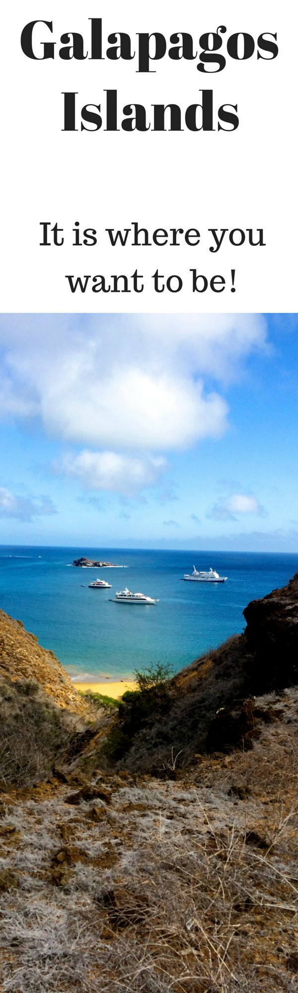 What is it really like on an Ecoventura yacht in the Galapagos? ~ PointsandTravel.com