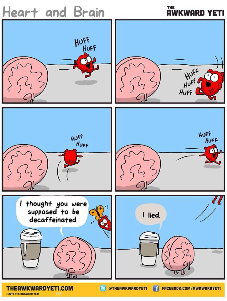 Heart and Brain by the awkward yeti