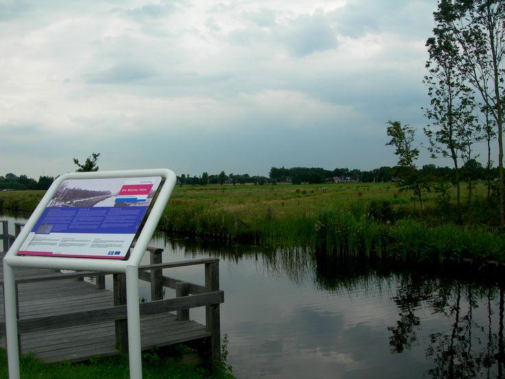de Bonte Hûn. Oudwoude. eigen foto.Friesland