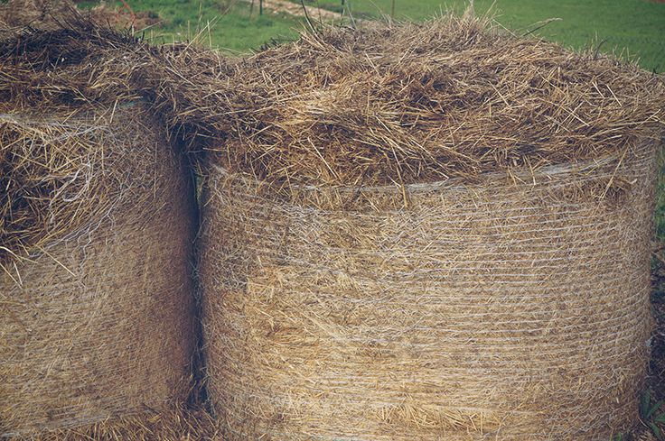 Unique free stock photo of Harvested haystack. Stuck of hay. Creative common. No attribute required.