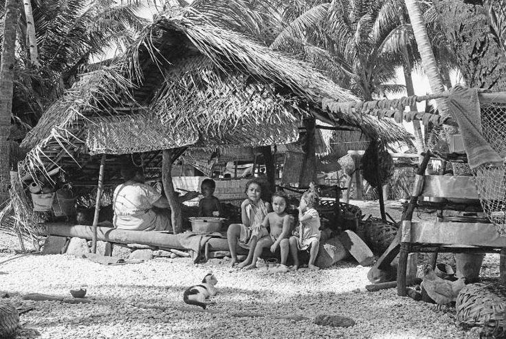 Title Food preparation in the cook-house Creator Friedlander, Marti. . Date 1971 Subject Dwellings--Tokelau. Cooking--Tokelau. Geographical Fakaofo (Tokelau) Publisher Department of Anthropology, University of Auckland